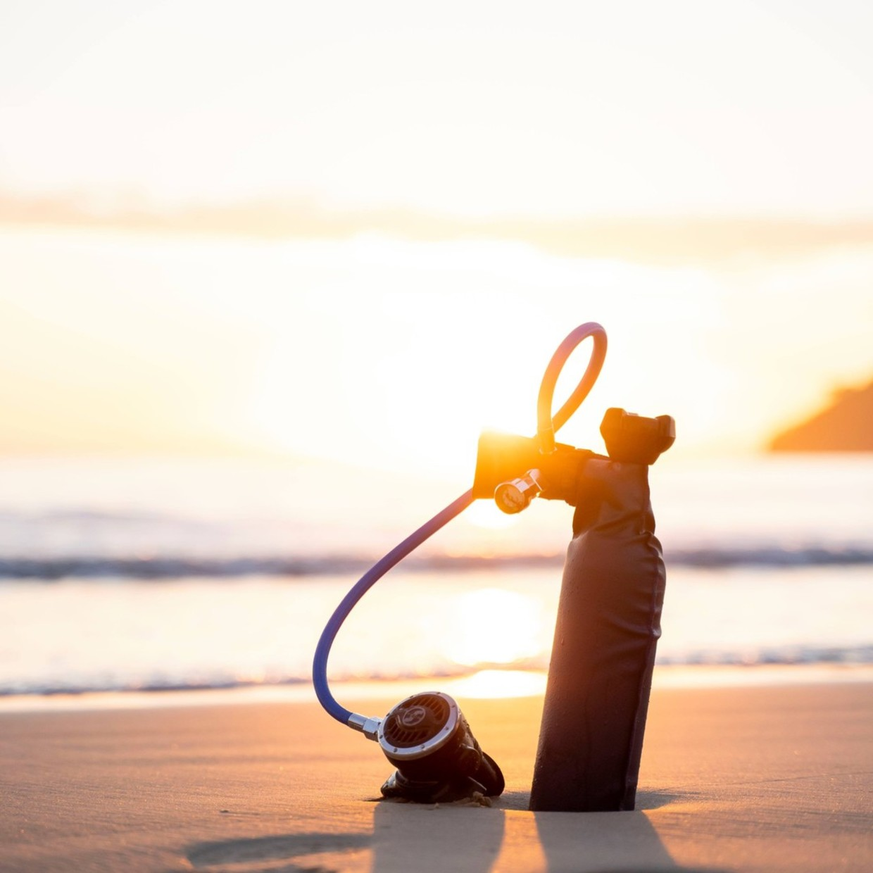 Take advantage of the last days of promotion on our site to buy your MiniDive equipment 😁 www.minidive.com